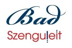 Szenguleit: Ihr Bad-Fachbetrieb in Westerrönfeld